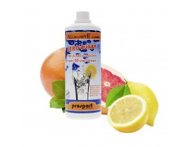 Zuckerfreier Sirup Grapefruit 1000ml